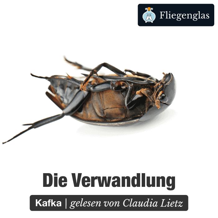 Verwandlung – Franz Kafka – Literatur Hörbuch