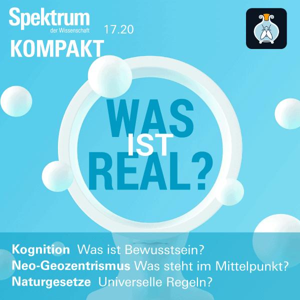 Realität: Was ist real? – Spektrum der Wissenschaft Kompakt